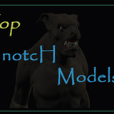 TopNotcHModels