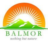 Balmor3D