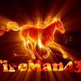 fireman43